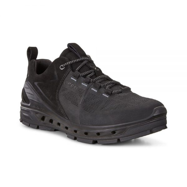 ecco mens lightweight hiking shoe