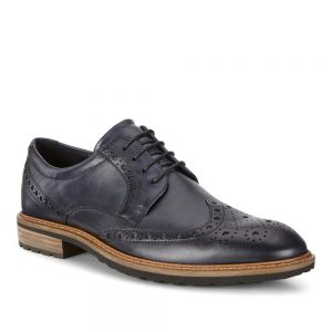 Ecco Vitrus I. Premium leather men's shoes.